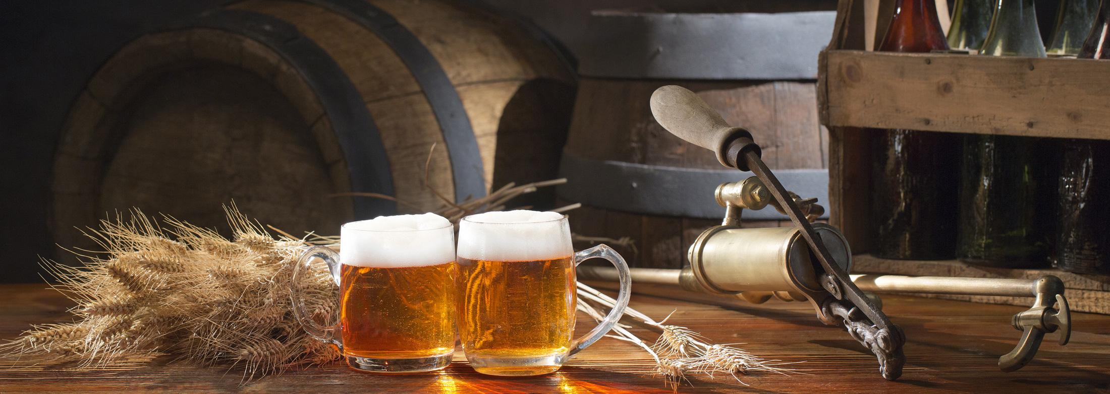 Пивные дрожжи своими руками для пива фото 4